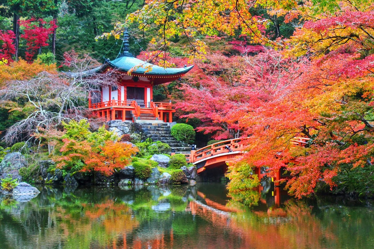 Bentendo Hall, Daigoji in Kyoto - autumn foliage