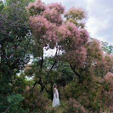 Wedding photographer Natali Fomina (Lisyaxa). Photo of 11.06.2016