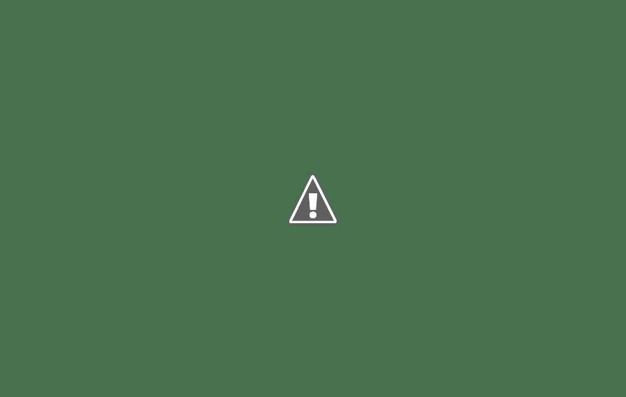Policiais se negam a reprimir protestos em Honduras