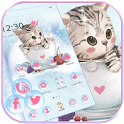 Cute Kitty Theme lovely Cup Cat Wallpaper icon