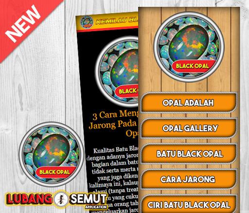 Aneka Batu Black Opal