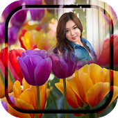 Colorful Tulips Photo Frames