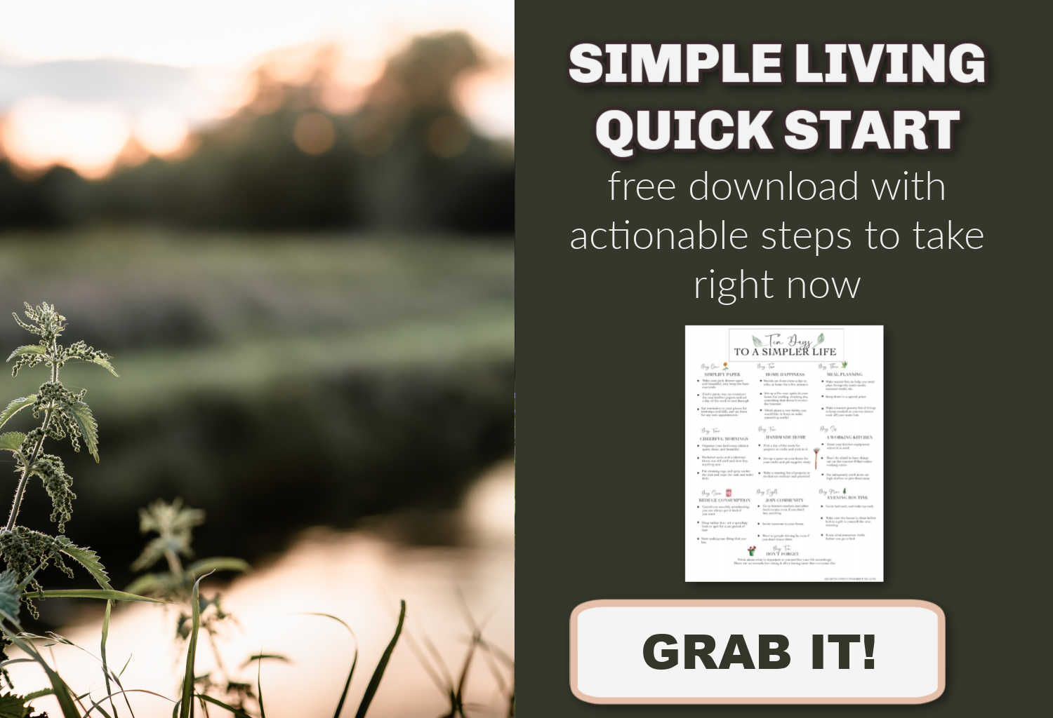 simple living quick email email opt in box