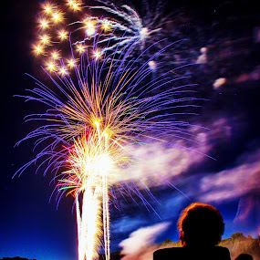 Fireworks Show by Scott Roth - Public Holidays July 4th