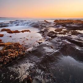 Activity by Geoffrey Wols - Landscapes Sunsets & Sunrises ( bendalong, coast, seascape, sunrise, waterscape, beach, sunset, morning,  )