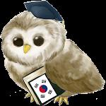Learn Korean Free Icon