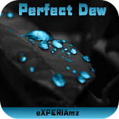 Тема eXPERIAmz - Perfect Dew