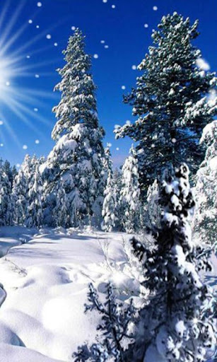 Winter Cold Sun LWP