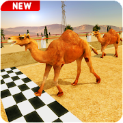 Crazy Camel Racing Fever 3D: Desert Race Simulator