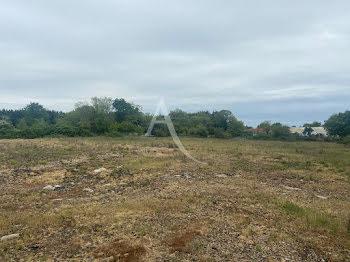 terrain à Challans (85)
