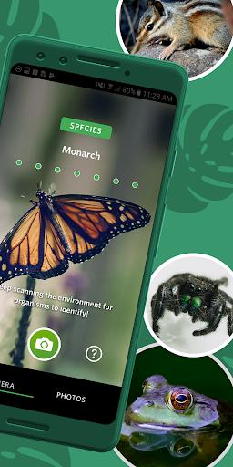 Seek by iNaturalist screenshot 2