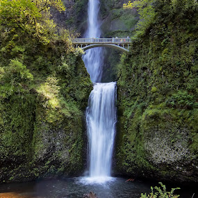 Multnomah Falls by Jack Nevitt - Landscapes Waterscapes ( oregon, portland, gorge, columbia, falls, waterfall, multnomah, river )