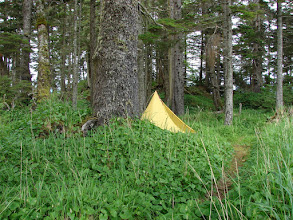 Photo: Campsite on Kitson Island