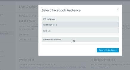 Klaviyo Facebook Audience Targeting Integration Shopify