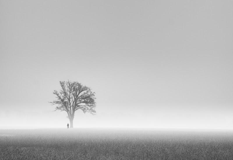 La nebbia come conforto della solitudine. di Saltini Rino