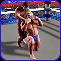 Incredible Wrestling Revolution Fighting Game