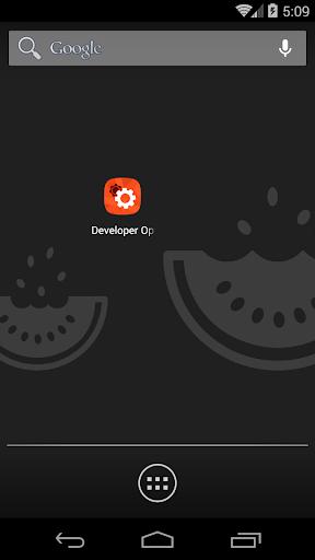 Access Developer Options