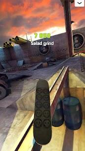 Touchgrind Skate 2 5