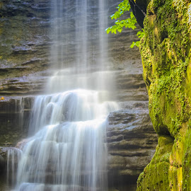 go with the flow by Sunil Pawar - Nature Up Close Water ( matthisen, forest, green, tree, illinois, riverbank, long exposure, water, trees, summer, matthiessen state park, beautiful, creek, rocks, outdoors, stream, waterfall, flowing water, river, falling water, freshwater, travel, lake )
