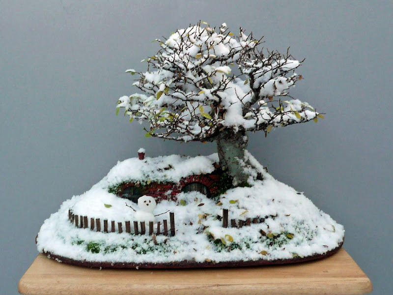 Photo: Apologies. I simply couldn't not add this stunning winter version of the Lord of the Rings / Bonsai landscape! By Chris Guise.  Notice the little snowman at the entrance too! Details...  Share it if you like it :) #bonsai #nature