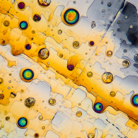 Marble Invasion by Scott Taft - Abstract Patterns ( abstracts, microscopic crystals, microscopy, abstract, microscope, abstract photography,  )