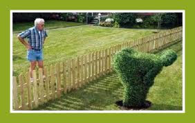 Photo: isn't this great to have in your yard for neighbors you don't like? lol