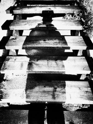 L'ombra sulle scale di Marino Paroli