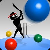 Googly Cricket