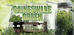 Swamp Head Gainesville Green