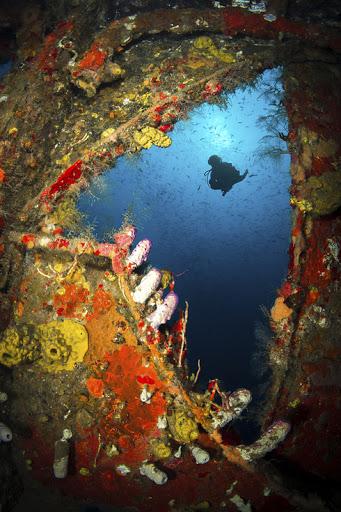 Bayahibe-Scuba - Scuba dive around the three shipwrecks in Bayahibe, Dominican Republic.