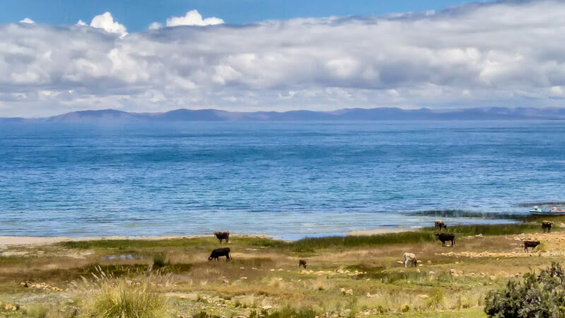 lake+titicaca+from+an+island+near+puno+peru
