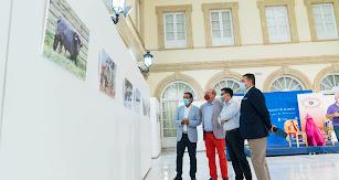 Visita a la exposición con motivo de su inauguración.