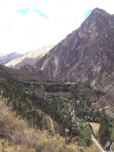 Photo: Looking up into the canyon in the Andes