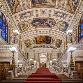Burgtheater Vienna by Christoph Reiter - Buildings & Architecture Public & Historical ( stairs, indoor, burgtheater, carpet, theater, austria )