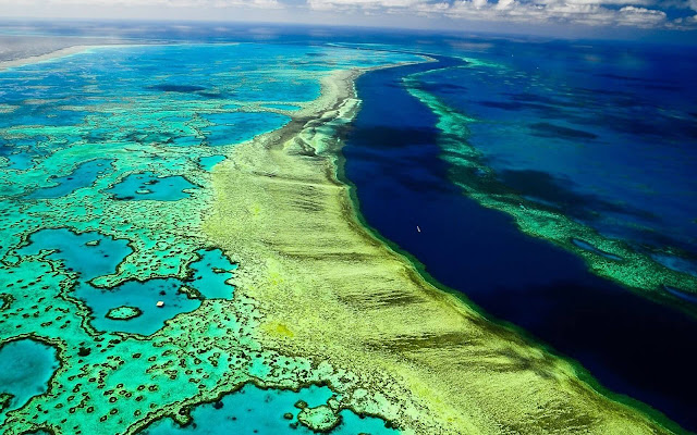 Great Barrier Reef - New Tab in HD