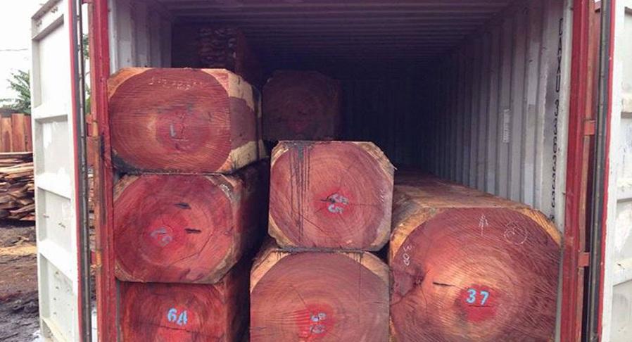 Gỗ Hương được xếp vào nhóm 1 - nhóm của các cây gỗ quý hiếm
