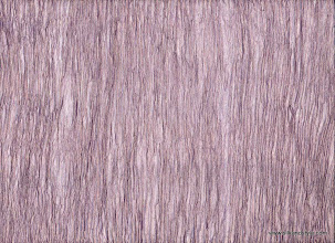 Photo: Crinkled Mixed Silk - SF TIS SG Purple 2