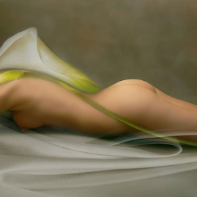 BENEATH THE SHEETS by Carmen Velcic - Digital Art People ( abstract, body, girl, nude, woman, she, digital )