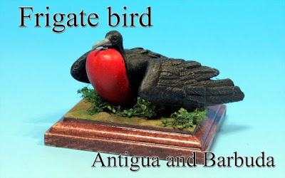 Frigate bird -Antigua and Barbuda-