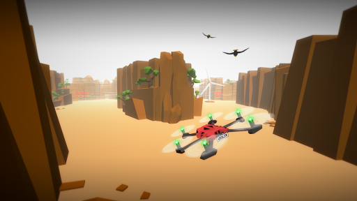 Drone Racer Canyons