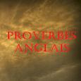 Proverbes Anglais icon