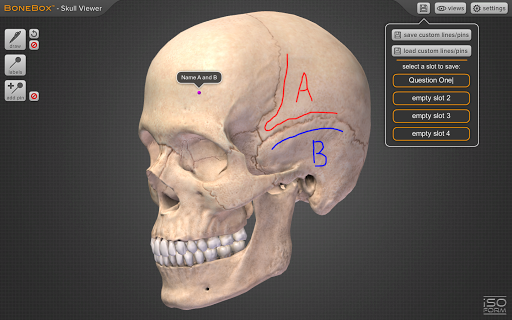 BoneBoxu2122 - Skull Viewer 1.0.0 screenshots 5
