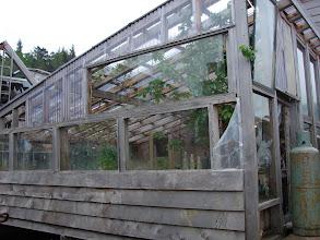 Photo: Greenhouse in Namu.