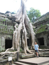 Photo: Ta Prohm Temple, Cambodia