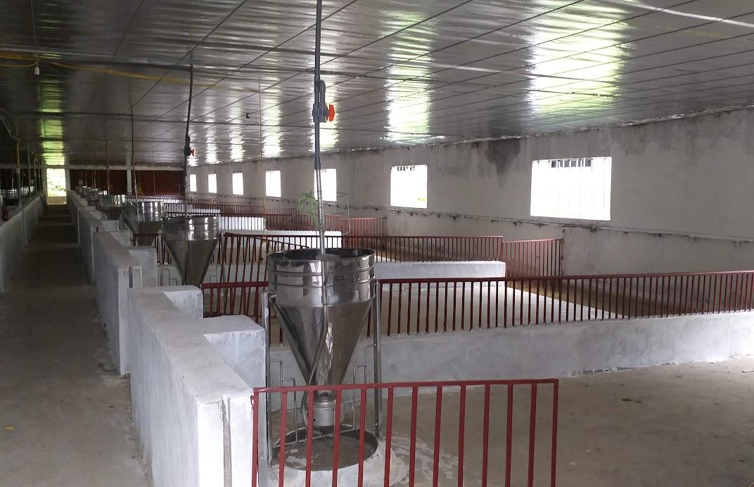 Hệ thống chuồng nuôi trong các khu nhà đã cơ bản hoàn thiện