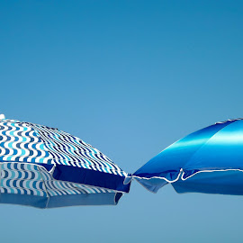 by Ken Mickel - Artistic Objects Other Objects ( mission beach, california, umbrella, beach )