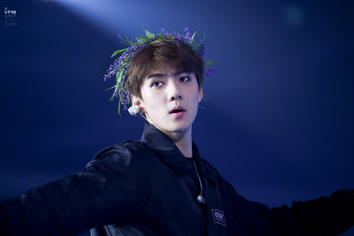 exo-sehun-flower-crown