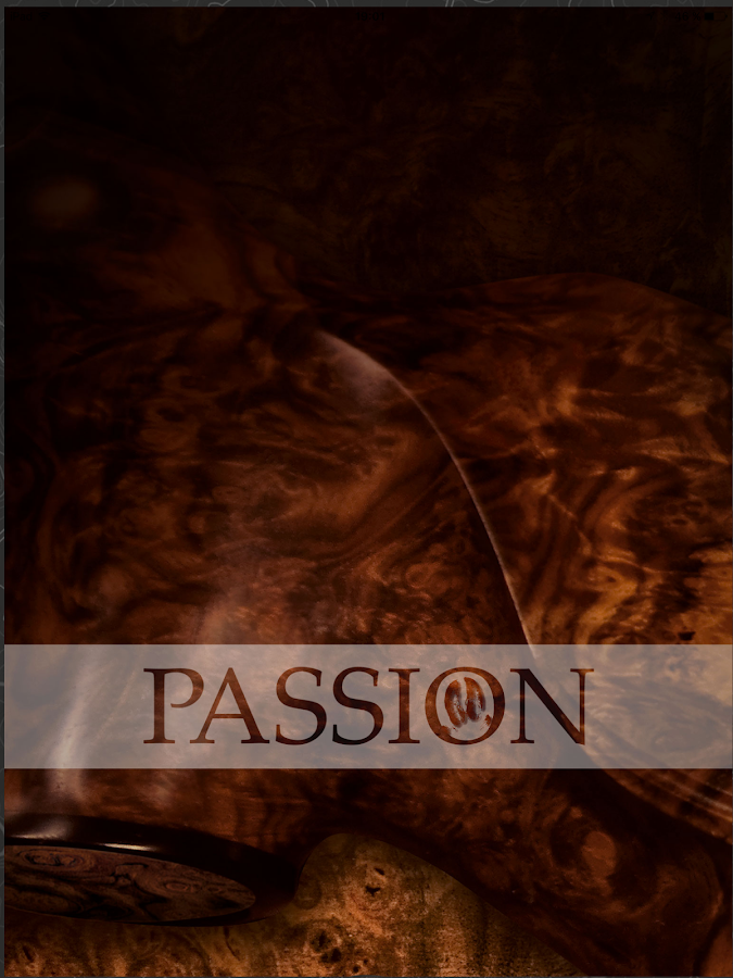 PASSION Magazine- screenshot