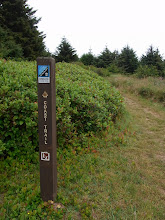 Photo: Oregon coast trail post