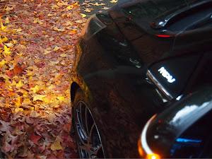 MPV LY3P H18年  23T  4WDのカスタム事例画像 miyamo 23Tさんの2020年11月27日23:55の投稿